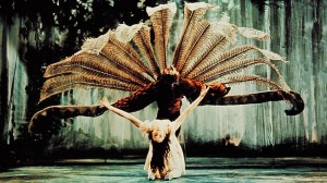 The Display, Kathleen Gorham and Barry Kitcher, courtesy Australian Ballet