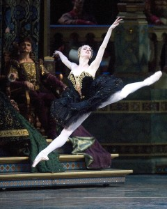 Gillian Murphy as Odile in Swan Lake, American Ballet Theatre, photo  © Gene Schiavone